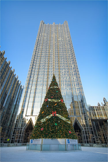 The-Tree-And-The-Tower-Of-Glass.jpg